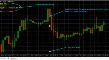 Forex profit tracker indicator