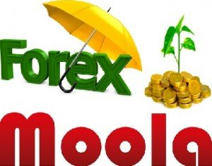Forex Moola Expert Advisor And FX Trading Robot - Best Forex EA's 2016